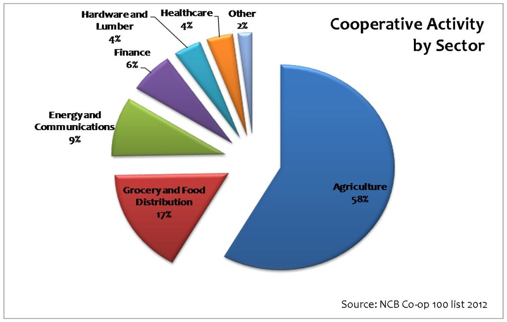 The NCB ranks cooperatives in the U.S. each year by revenue. This chart shows the breakdown of the top 100 cooperatives in 2012 by the goods and services they provide.